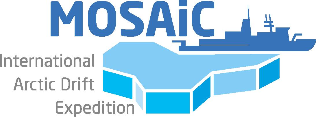 mosaic logo Auswahl 2 rgb 08